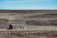 Last Abide (Pedalhead'71) Tags: dusty washington abandoned barn palouse