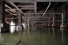 Aqueduct (gregador) Tags: rochester ny subway graffitti aqueduct geneseeriver abandoned urbanexploring urbanexploration urbex