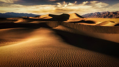 King of Sand (Darkness of Light) Tags: death valley national park dunes dune mesquite shadow warm light sony a6000 nik color efex