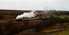 Bromont (charlestindall) Tags: outdoor train steam vintage transport rail england heritage countryside yorkshire uk north winter morning moor heather bridge