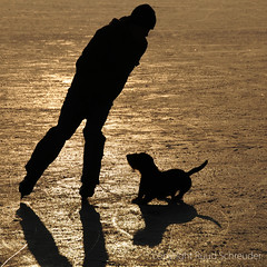 Silhouettes on ice (explored) (Ruud.) Tags: ruudschreuder nikon nikond300 d300 schaatsen skating schlittschuh laufen ijs ice eis glace slhouette hond hund dog chien monty bsquare