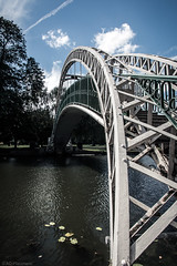 Bending metal (Anthony P26) Tags: architecture bedford bedfordshire category england nonbuilding places travel architecturephotography bridge metalstructure span spanning river water thegreatouse english britain greatbritain uk unitedkingdom pattern shapes steelarchbridge steel lines arch travelphotography park citypark bedfordshireembankment theembankment canon1585mm canon70d canon wow outdoor building structure buildingstructure infrastructure footbridge