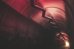 Kond Pedestrian Tunnel (Yerevan, Armenia) (Demipoulpe) Tags: kond pedestrian tunnel yerevan armenia urbex urban exploration color concret soviet architecture archi