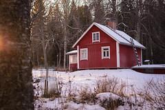 DSC_8144 (vargandras) Tags: cottage wooden house sunlight tree garden winter