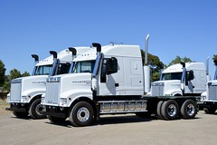 Iveco (quarterdeck888) Tags: iveco 7800 ivecopowerstar iveco7800 powerstar7800 newtruck delivery newdelivery bobtailtrucks transport semi class8 overtheroad lorry heavyhaulage cartage haulage bigrig jerilderietrucks jerilderietruckphotos nikon d7100 frosty flickr quarterdeck quarterdeckphotos roadtransport highwaytrucks australiantransport australiantrucks aussietrucks heavyvehicle express expressfreight logistics freightmanagement outbacktrucks truckies