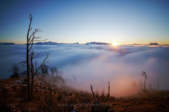 Sunset above the Clouds (www.oberschneider.com - Christoph Oberschneider) Tags: sonyalpha99ii sonyalpha99mkii longexposure salzburg alps mountains sunset tamron1530 tamronsp153028divcusd fog mist misty nebel wolken seaofclouds carpetofclouds motion fall autumn gaisberg scenicsnotjustlandscapes ilca99m2 sonyalpha alpha99ii