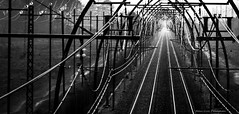 Straight ahead (Jean-Luc Peluchon) Tags: bw graphic railway artistic fz1000 lumix composition