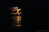 Rise like a phoenix (hvhe1) Tags: sunset wild bird nature phoenix animal norway backlight wildlife fjord rise birdofprey zeearend whitetailedeagle seeadler lauvsness hvhe1 hennievanheerden pygargueàqueueblanche olemartinpohle