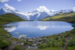 Lugar de ensueo. (_lyz_) Tags: mountain mountains landscape switzerland suiza paisaje montaa glaciar montaas glaciares bachalpsee