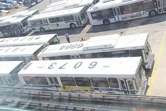 IMG_8208 (GojiMet86) Tags: new york city nyc bus buses casey 1999 v orion depot mta ng 2009 vii 2007 stengel genii hlf 6880 3998 6068 6073 6143 6202 6851 6864 6874 6224