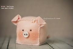 Porquinha de feltro (Dani_Fressato) Tags: pig handmade artesanato craft felt feltro trabalhomanual ideias retalhos porquinha alfineteiro danifressato