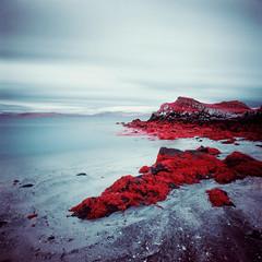 Ruigh na Traghad (Mark Rowell) Tags: 120 6x6 film mediumformat ir scotland highlands hasselblad infrared expired swc 903 eigg eir aerochrome