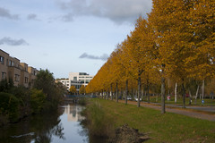 Floriade_251015_9 (Bellcaunion) Tags: park autumn fall nature zoetermeer rokkeveen florapark
