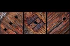 Wood Rust  2