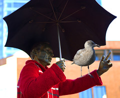 It's Cold When (swong95765) Tags: park cold bird weather statue bronze umbrella sweater funny gull pioneersquare colder