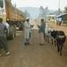 Street Scene in Dinsho, Ethiopia
