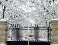 Happy New Year!  [Explored on 12/31/2015 at #56] (Valentina Sokolskaya) Tags: winter snow castle nature season gate pa happynewyear lowermerion challengegamewinner