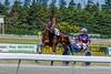 DSC05122.jpg (The Digital Birdcage) Tags: horseracing burnoff harnessracing race8 ashburtonraceway colindefilippi