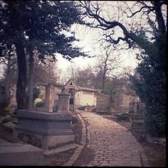 Cimetire du Pre-Lachaise (Lana Mayakovskaya) Tags: film analog lomo lomography lofi paris cemetery perelachaise france dianamini squareformat