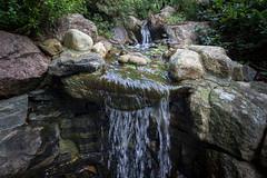 Before Autumn (Ludvius) Tags: green nature water garden ludovicophotography wwwludovicophotocom kristiansand gimle austagder norway