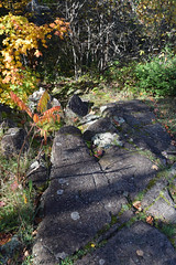 Bond Falls Scenic Site (turn off your computer and go outside) Tags: 2016 bondfallsscenicsite michigan uppermichigan autumn fall nature ontanogoncounty outdoors