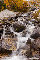 Cascading Creek Bugaboos (Don Geyer) Tags: goldenlarchesaboveacascadingcreekinfall bugabooprovincialpark britishcolumbia canada bc creek creeks forest larch larixspecies larches forests habitat environment naturalenvironment habitats environments naturalenvironments landscape landscapes natural outdoor outside outdoors river rivers rock rocks scenic scenery scenics wild uncultivated wilderness backcountry wilds ecology ecosystem ecosystems nature diffused soft autumn fall falls autumns morning mornings brook water brooks stream streams cloudy cloud clouds