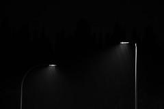 Primeras lluvias de otoo (Marmotuca) Tags: lluvia farolas contraluz noche agua luz blancoynegro byn bw