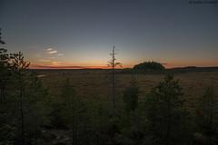 16082004.jpg (uusija) Tags: kurjenrahka luonto maisema nature suo