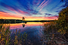 Sunset over Vgvannet (Usstan) Tags: nikon calm sigma reflection reflections lake enebakk norway shadows tree ytreenebakk autumn d750 landscape lens outdoor evening dusk clear 1224mm locations sunset norge seasons akershus sky serene water sun clouds colors no