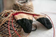 that time of year (observed.by.diane) Tags: knitting socks yarn