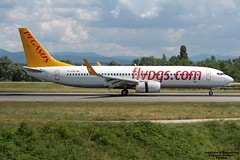 TC-CCP LFSB 01-08-2016 (Burmarrad (Mark) Camenzuli Thank you for the 12.9) Tags: airline pegasus airlines aircraft boeing 73786j registration tcccp cn 37746 lfsb 01082016