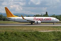 TC-CCP LFSB 01-08-2016 (Burmarrad) Tags: airline pegasus airlines aircraft boeing 73786j registration tcccp cn 37746 lfsb 01082016