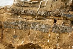 paiaundi_JPP8087 (ptxjp) Tags: ocan nature nikon d300 captureone geologie pyrnes roche
