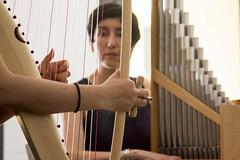 Medieval Músic Besalú-Pythagorean Tunning II-A-039