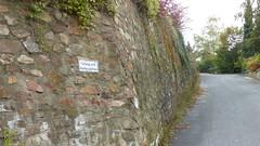 Fußweg zum Günderodehaus