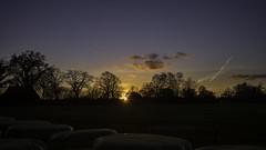 Lichtgenuss mit dem Leitz Summicron 2/35 (Julie s Photo s) Tags: leitz summicron sony