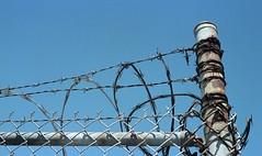 barbed wire (Marco loe) Tags: 35mm film potra portra kodak barbed wire