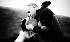 Puppy Love (Missy Jussy) Tags: trevorkerr rupert dog love puppy man springerspaniel spaniel englishspringer mono monochrome blackwhite blackandwhite canon cannon600d canon70200mm littledoglaughednoiret