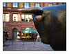 el Toro (HP-Fotografie) Tags: germany deutschland hessen frankfurt am main alte börse lumix gx7