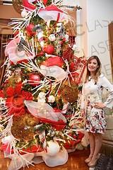 Navidad en rojo y blanco