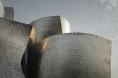 (onesevenone) Tags: onesevenone stefangeorgi spain bilbao guggenheim museum architecture building frankgehry gehry