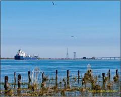 Louis P _2570 LR (bradleybennett) Tags: ship shipping cargo tanker tank river delta boat port channel steam large crew crane bay ocean dock pier blue red water line bulkcarrier louis p