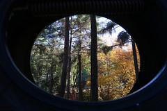 Troodos Geopark (47) (Polis Poliviou) Tags: polispoliviou polis poliviou   cyprus cyprustheallyearroundisland cyprusinyourheart yearroundisland zypern republicofcyprus  cipro  chypre   chipir chipre  kipras ciprus cypr  cypern kypr  sayprus kypros polispoliviou2016 troodosgeopark troodos mediterranean nicosia valley life nature forest historical park trekking hiking winter walking pine pines prodromos limassol paphos fall autumn geopark kakopetria