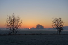 Winter dawn (brittajohansson) Tags: outdoor landscape sky sunrise dawn polder trees winter frost mist field