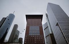 Japan Tower (ax.stoll) Tags: frankfurt japan tower maintower city skyline cloudy grey urban urbex birds sky