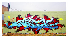 ASTE (Rodosaw) Tags: street chicago art photography graffiti culture este documentation tac aste subculture feds dte of