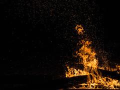 Fuoco (giustotti) Tags: wood italy black beach nature night outdoors four cuatro fire italia guitar background natura olympus calm bonfire micro hearth nophotoshop spiaggia notte fuoco chitarra legna fal thirds giuseppe gargano m43 totaro focolare tercios giuseppetotaro