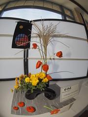 Mum, Japanese Lantern & Ornamental Grass by Tomoko Shelpherd of the Koryu & Ikenobo Schools (nano.maus) Tags: fisheye lauritzengardens japaneseflowerarrangement omahabotanicalsociety japaneseambiencefestival