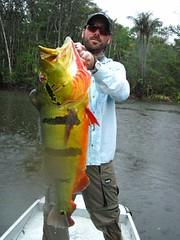 Amazonia 2012 (51)