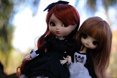 Leslie & Sari~ (Local Ghost) Tags: chibi dal pullip risa stica